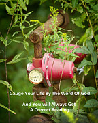 Goldenrod Wildflowers Prints - Gauge Your Life By The Word Of God Print by Kathy Clark