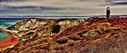Gay Digital Art Originals - Gay Head Marthas Vineyard by M S McKenzie