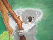 Koala Pastels - GDay Mate by Melanie Johnston