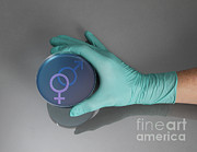 Glove Prints - Gender Symbol Petri Dish Print by Photo Researchers