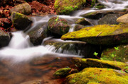 Spring Scenes Metal Prints - Gentle Cascades - Natures Flow Metal Print by Thomas Schoeller