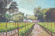 Wine Country Originals - Gentle Spring by Paul Youngman