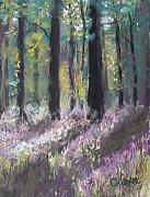 Woods Pastels - Gentle Wakening by Cathy Weaver