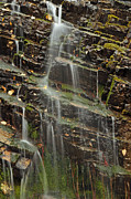 Green - Gentle Waterfall in Glacier National Park by Bruce Gourley