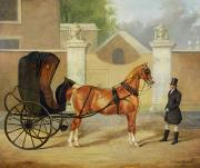 Horse And Cart Paintings - Gentlemens Carriages - A Cabriolet by Charles Hancock