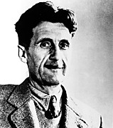 Author Art - George Orwell, Circa 1949 by Everett