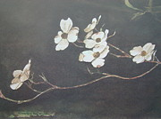 First Lady Paintings - Georgia Dogwood by Charles Roy Smith