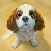 King Charles Spaniel Prints - Georgia Print by Sean ODaniels