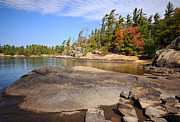 Bay Islands Photo Prints - Georgian Bay Autumn Print by Charline Xia