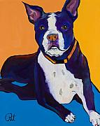 Pet Portraits Framed Prints - Georgie Framed Print by Pat Saunders-White