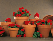 Featured Art - Geranium Pots by Anne Geddes