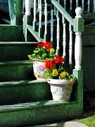 Geraniums And Pansies On Steps Print by Susan Savad