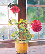 Geraniums Framed Prints - Geraniums at Gillthwaite Rigg Framed Print by Pat Yager