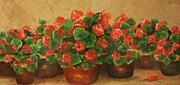 Red Geraniums Painting Posters - Geraniums Galore Poster by Barbara Sutton