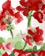 Red Geraniums Prints - Geraniums  Print by Lorenka Campos