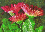 Gerbera Daisy Paintings - Gerbera Daisies Still Life by Anne Kitzman