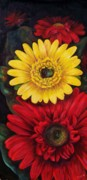 Gerbera Daisy Paintings - Gerbera by Dana Redfern