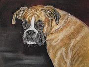 Cute Dogs Pastels - German Boxer by Irisha Golovnina
