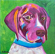 German Pointer Prints - German Pointer - Bella Print by Susan Szabo