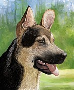 German Shepard Digital Art - German Shepard  by Heidi Creed