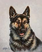 Police Paintings - German Shepherd by Alice Taylor