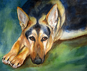 Dog Watercolor Framed Prints - German Shepherd Framed Print by Cherilynn Wood