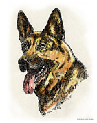 Clip Drawings Prints - German-Shepherd-Portrait Print by Gordon Punt