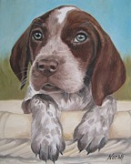 German Pointer Prints - German Shorhaired Pointer Puppy Print by Jindra Noewi