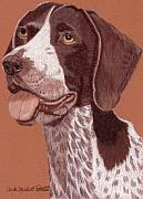 German Pointer Prints - German Shorthair Pointer Vignette Print by Anita Putman