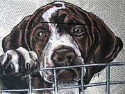 Cage Paintings - German Shorthair Puppy-Please let me out. by Christas Designs