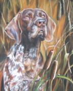 Shorthaired Prints - German Shorthaired Pointer in Cattails Print by Lee Ann Shepard