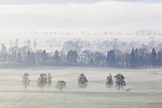 Moos Prints - Germany, Bavaria, View Of Foggy Landscape Print by Westend61