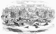 Spectator Prints - Germany: Dog Racing, 1859 Print by Granger