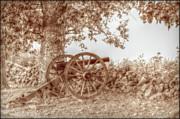 Gettysburg Battlefield Cannon Seminary Ridge Sepia Print by Randy Steele