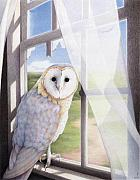 Animal Drawings Prints - Ghost In The Attic Print by Amy S Turner
