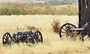 Conestoga Wagon Photos - Ghost Of The Oregon Trail by Everett Bowers