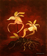Orchid Art Paintings - Ghost Orchids by Gina De Gorna