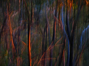 Michelle Wrighton Posters - Ghost Trees at Sunset - Abstract Nature Photography Poster by Michelle Wrighton