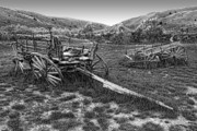 Hay Wagon Framed Prints - GHOST WAGONS of BANNACK MONTANA Framed Print by Daniel Hagerman