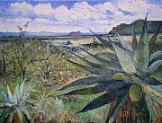 Enver Larney Art - Giant Aloes at Pelegano Botswana 2008  by Enver Larney