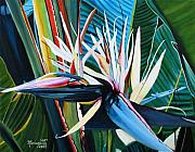 Tropical Flower Painting Posters - Giant Bird of Paradise Poster by Marionette Taboniar
