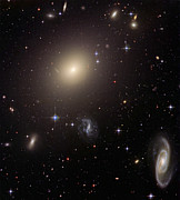 Elliptical Galaxy Posters - Giant Elliptical Galaxy And Its Host Poster by Stocktrek Images