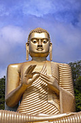 Sitting Buddha Posters - Giant gold Bhudda Poster by Jane Rix
