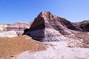 Petrified Forest National Park Prints - Giant Purple Mountain Print by Adam Jewell