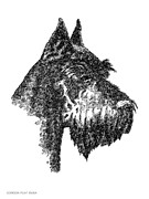 Clip Drawings Prints - Giant-Schnauzer-Portrait Print by Gordon Punt