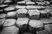 Stepping Stones Photo Framed Prints - Giants Causeway Stones Northern Ireland Framed Print by Joe Fox