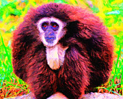 Monkey Digital Art Prints - Gibbon . Photoart Print by Wingsdomain Art and Photography