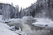 Gibbon Framed Prints - Gibbon River With Mist Framed Print by Greg Dimijian