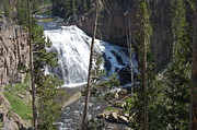 Gibbons Prints - Gibbons Falls at Yellowstone Print by Bill Dinkins