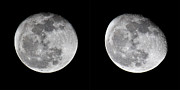 Waning Gibbous Moon Prints - Gibbous Moon Print by Betsy A Cutler East Coast Barrier Islands